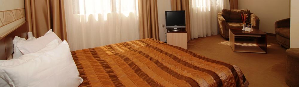slide-deluxe-room